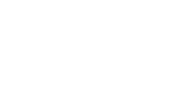 New York School of Finance logo